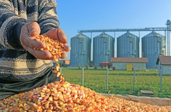 Kusto Group's agricultural division, Kusto Agro, is operating in Ukraine and Kazakhstan.