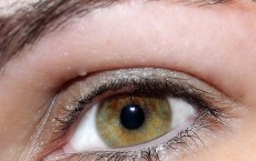 Cholesterol Lowering Drugs Could Help Fight Blindness: Study