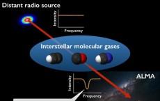 Radio Spectra