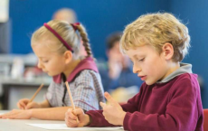 Using multiple senses can help improve math learning