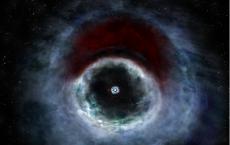 HD 142527 Binary Star System