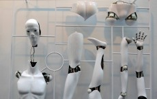 Indian Academic Builds Humanoid Robot with Artificial Intelligence