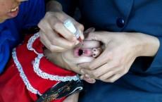 Polio Vaccination Program In Kabul