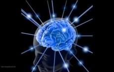 Permanent Memory In The Brain