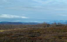 Sampling Site in Kilpisjärvi, Finnish Lapland (IMAGE)