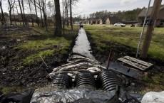 Arkansas Oil Spill Lead to Death of Oil Covered Ducks