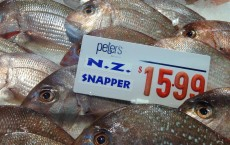 New Zealand Snapper in Fish Market (IMAGE)