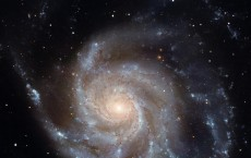 Spiral structure in the Pinwheel Galaxy (IMAGE)