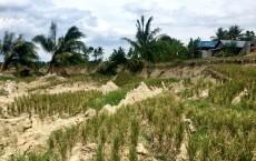 Irrigation Worsened Earthquake-Triggered Landslides (IMAGE)