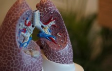 Improve Your Lung Health with These Effective Tips