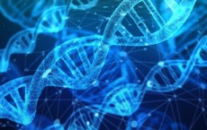 Digital PCR: An Assay of Choice for Various Applications