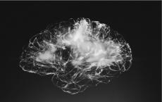 Innovative Sensor May Detect Brain Degeneration Early