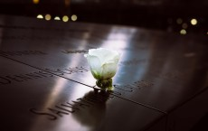 Why Are 9/11 Survivors Vulnerable to COVID-19?