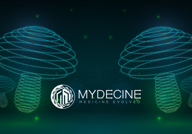 Psychedelic Solutions. How Mydecine Innovations Group is Working to Solve the Mental Health Crisis
