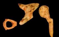 Reseacher Analyzes Oldest Fossil Hominin Ear Bones Ever Recovered