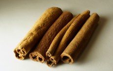 Cinnamon can Halt the Progression of Parkinson's Disease